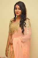 Bhanu Shri looks stunning in Beig Saree choli at Kalamandir Foundation 7th anniversary Celebrations ~  Actress Galleries 026.JPG