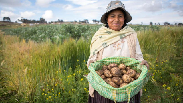 Bolivia, entre economías con mayor crecimiento en America Latina