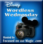 Focused On The Magic Wordless Wednesday Blog Hop