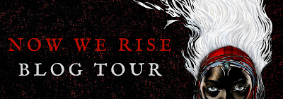 Now We Rise blog tour