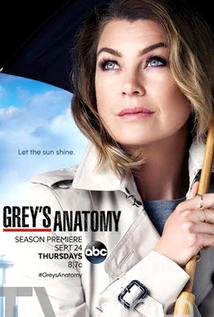 Baixar Grey's Anatomy 12ª Temporada Dublado e Legendado