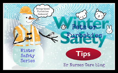 Winter Safety Series: 10 Top Tips For Winter Pet Safety #pets #wintersafety