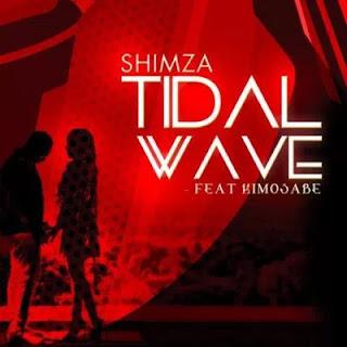 DJ Shimza - Tidal Wave (feat. Kimosabe)