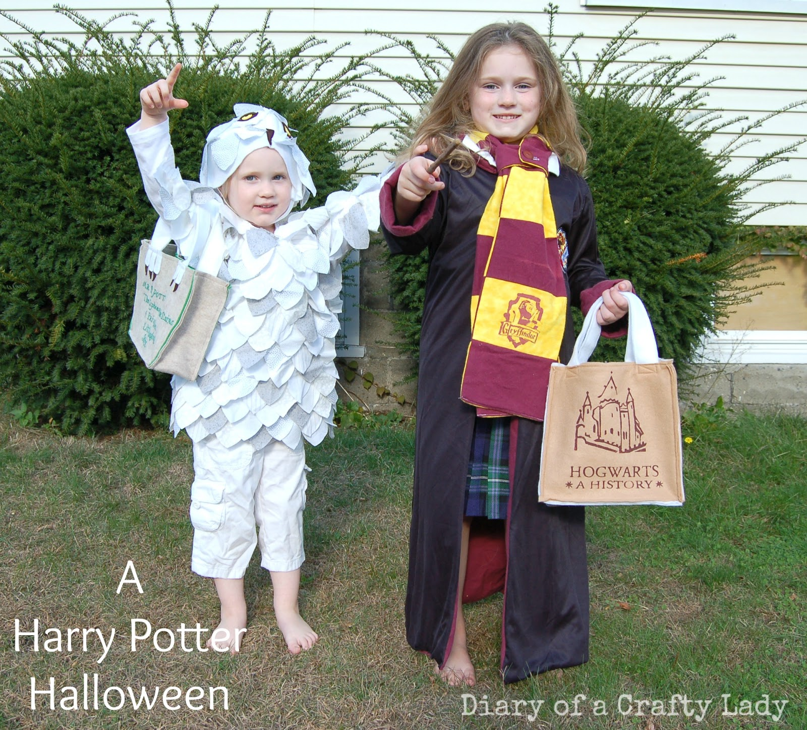 diary of a crafty lady harry potter halloween costumes. Black Bedroom Furniture Sets. Home Design Ideas