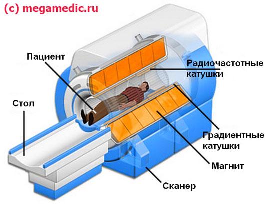 Принцип действия МРТ