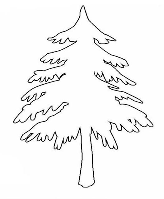 Gambar Mewarnai Pohon Cemara - 2