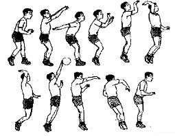 pengetahuan dasar bola voli untuk anak sekolah dasar