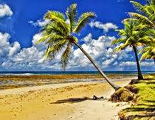 Playa y meditación en la arena