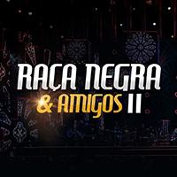 Baixar A Vida Inteira Raça Negra Part. Eduardo Costa MP3