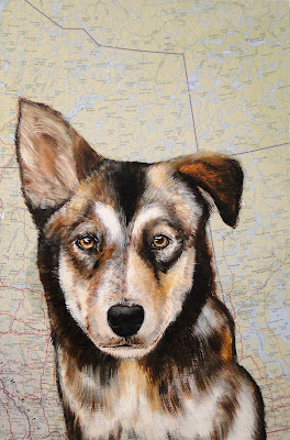 work-in-progress photo 3, oil painting of a sled dog