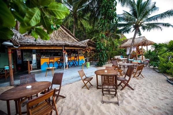 Khách sạn khi đi du lịch Quy Nhơn Big Tree Backpackers and Bistro