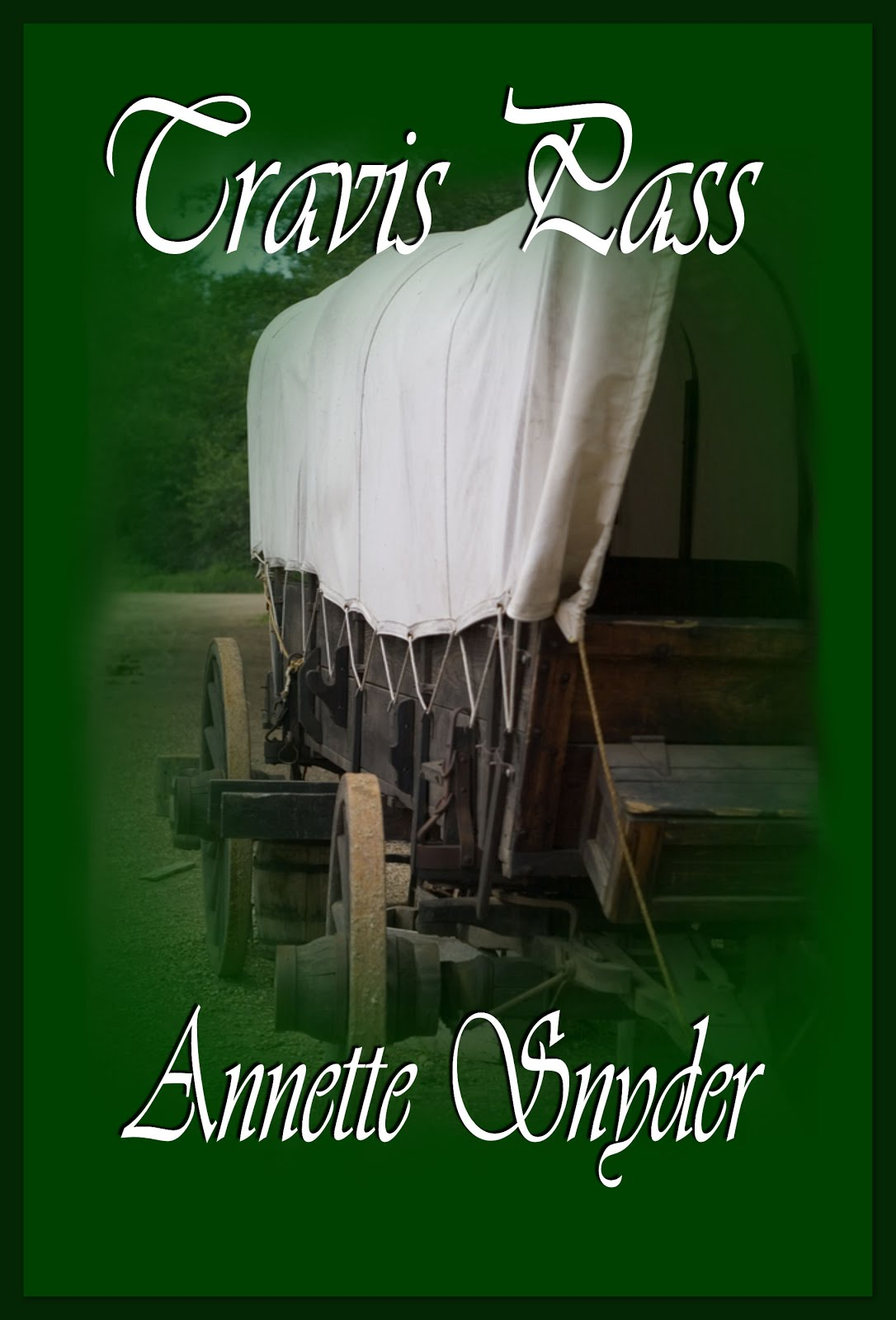 Annette Snyder's Historical, Travis Pass Series: