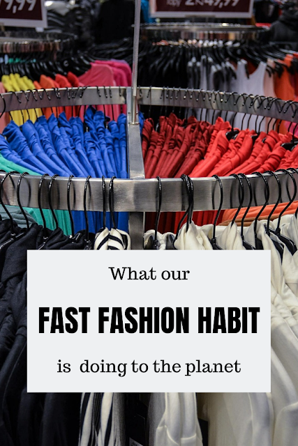 Find out why fast fashion is bad for the environment