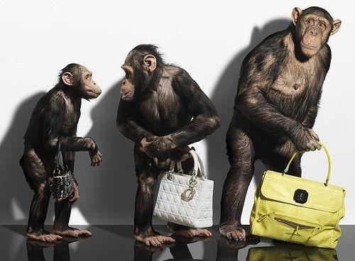 784414a192 Μια επώνυμη τσάντα έχει το δικό της προσωπικό στυλ. Το μόνο πρόβλημα είναι  η εξωφρενική τιμή τους. Το γεγονός αυτό ωθεί τις fashionistas να αναζητούν  ...