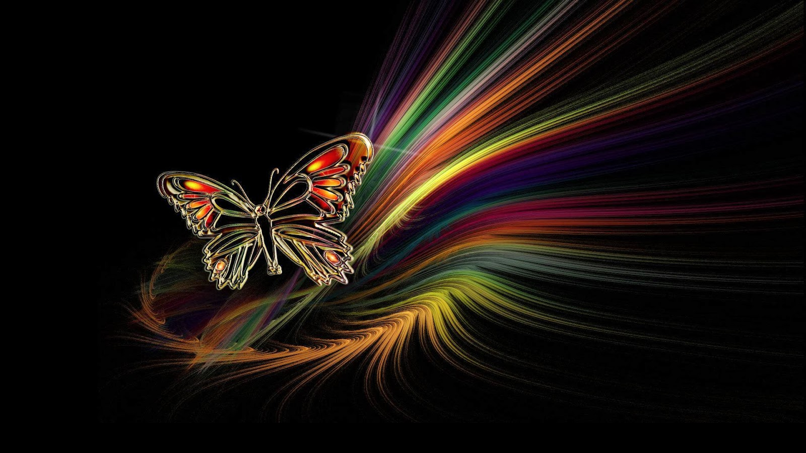 Butterfly 3d Live Wallpaper Free Download Wallpaper Picture Image Islamic Information English And