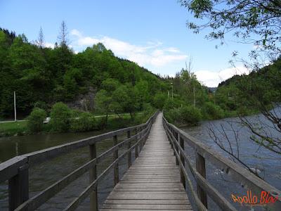 Pod de lemn la Salard