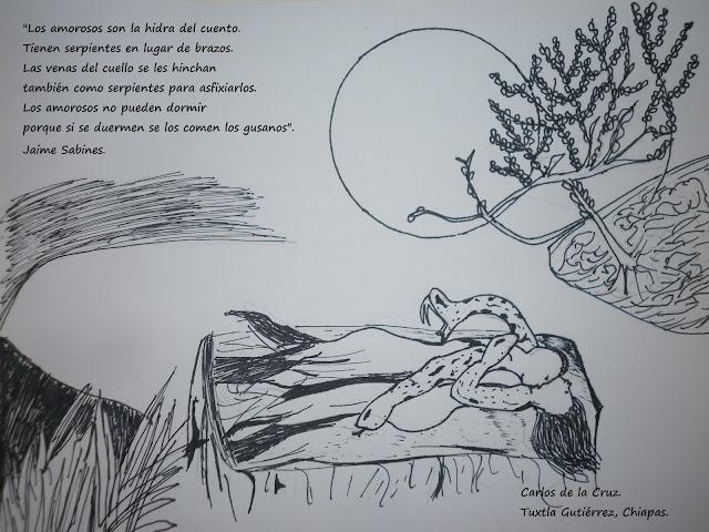 dibuja poemas
