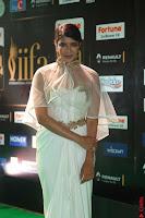 Lakshmi Prasanna in Transparent Saree Spicy Sleeveless Choli at IIFA Utsavam Awards 2017  Day 2  Exclusive 11.JPG