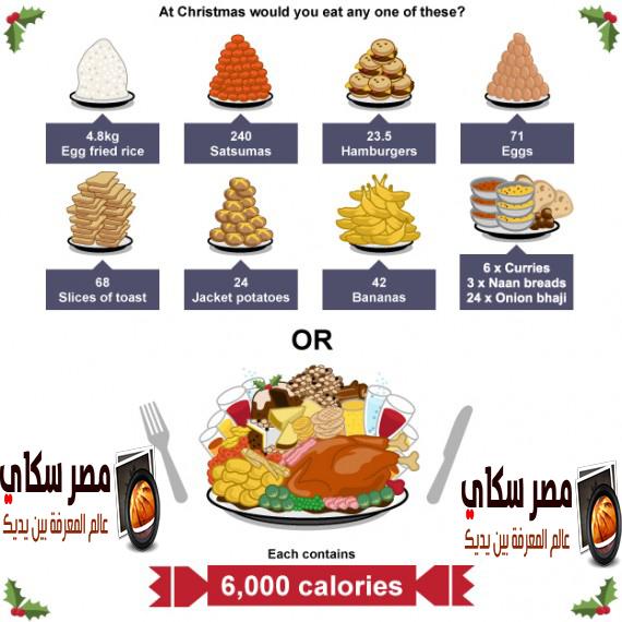 كيفية ترتيب الطعام حسب الأهمية وكيف يتم حساب السعرات الحرارية Food Order