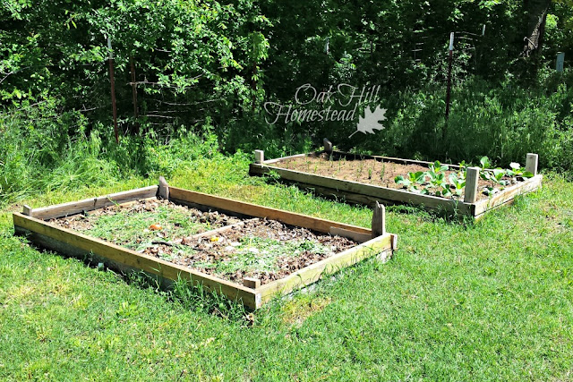 How to build garden boxes.