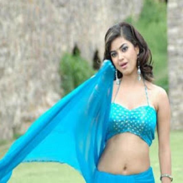 Tamil Actress Hot Images: NILA ACTRESS HOT BLOUSE NAVEL PHOTOS