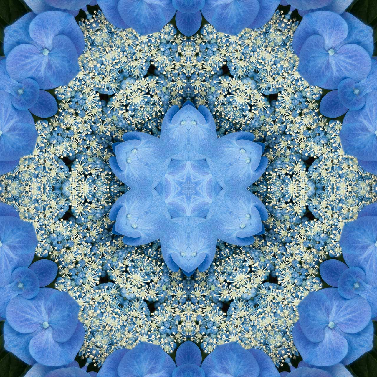 Kaleidoscope H7 by Jeanne Selep