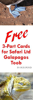 FREE 3-Part Cards for Safari Ltd Galapagos Toob from In Our Pond