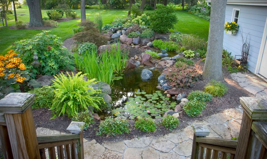Aquascape Your Landscape: Backyard Oasis: From Drab to Fab