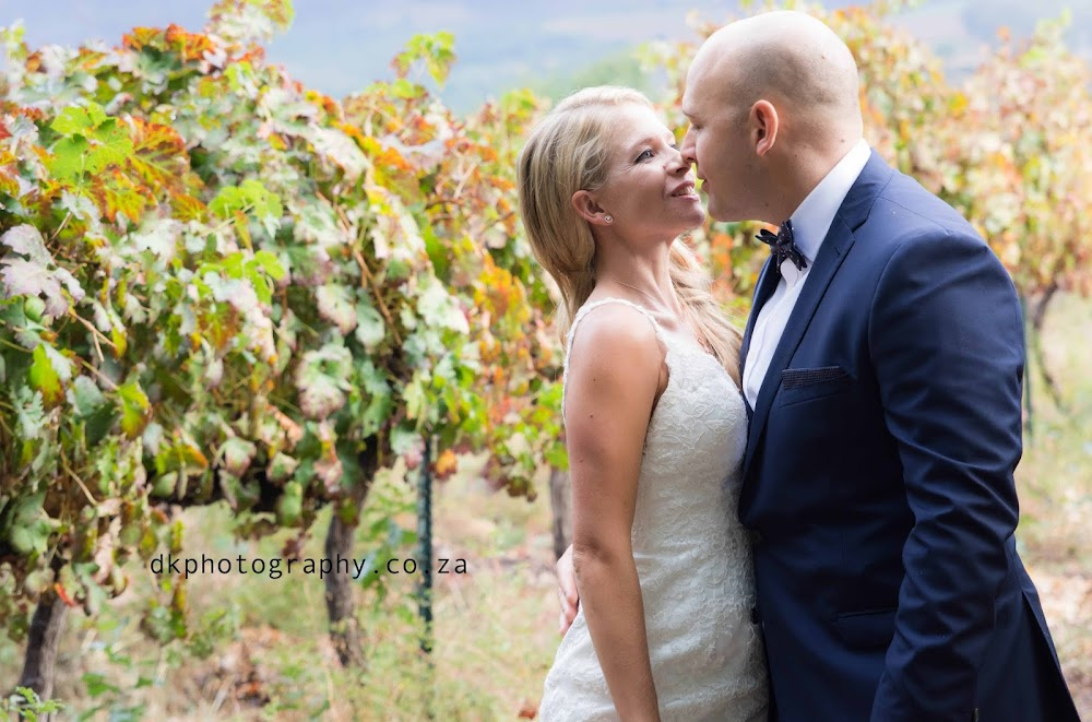 DK Photography 9 Preview ~ Nikki & Dale's Wedding in Vrede en Lust  Cape Town Wedding photographer
