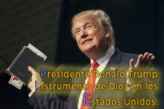 donald,trump,presidente-estados-unidos