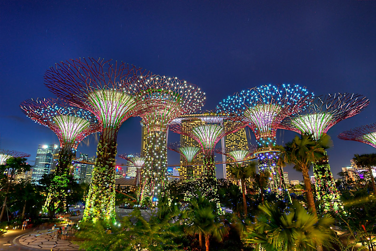 Gardens by the Bay w Singapurze.