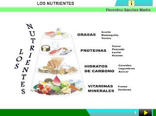 http://www.ceiploreto.es/sugerencias/cplosangeles.juntaextremadura.net/web/curso_4/naturales_4/los_nutrientes/los_nutrientes.html