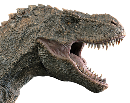 A tiny tyrannosaur has just been discovered: it was so light that it only weighed 90 kilos