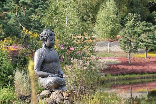 Đạo Phật Nguyên Thủy - Kinh Tiểu Bộ - Trưởng lão ni Ambapàlì
