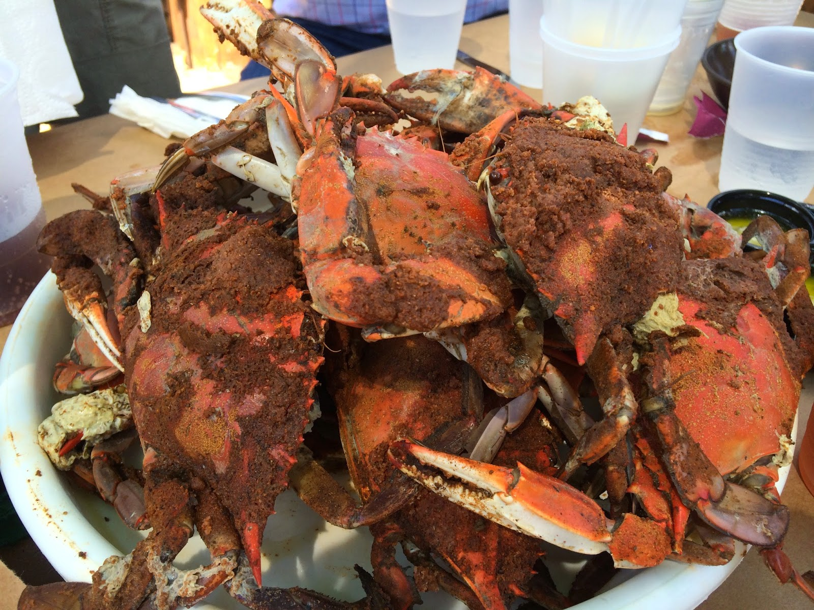 2 Dudes Who Love Food Mike S Crab House Riva Maryland