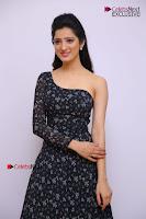 Telugu Actress Richa Panai Stills in One Shoulder Floral Long Dress at Rakshaka Bhatudu Movie Interview  0045.JPG