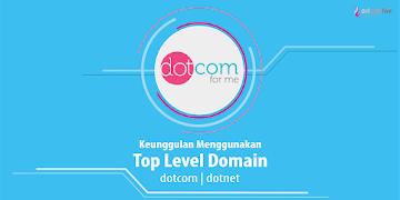 Keunggulan Menggunakan Top Level Domain .net/.com Versi Ngeblogku