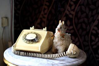 La llama que llama!, de Álex