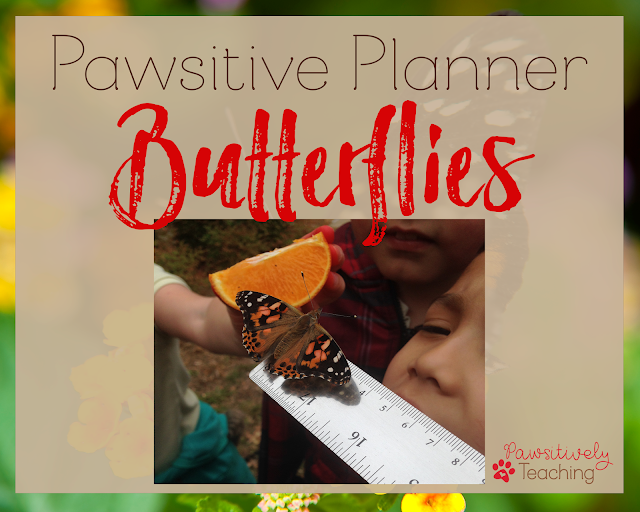 Butterfly Teaching Ideas: A Collection of Teaching Ideas for Butterflies to Use in Your Primary Classroom Includes a FREEBIE
