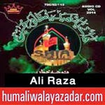 http://audionohay.blogspot.com/2014/10/ali-raza-nohay-2015.html