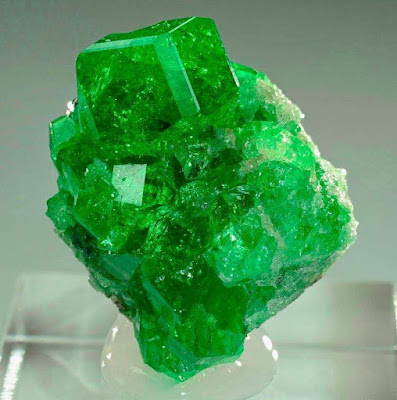 Tsavorite garnets on graphite matrix!From Merelani Mine, Arusha, Tanzania.