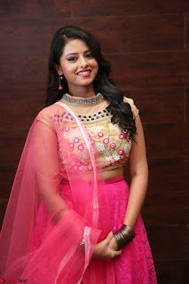 Geethanjali sizzles in Pink at Mixture Potlam Movie Audio Launch 037.JPG
