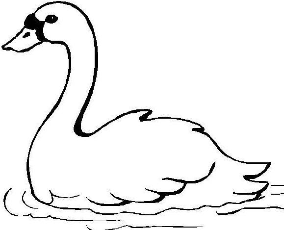 Dibujos De Cisnes Enamorados Imagui
