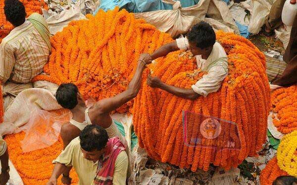 funny-indian-flower-man-picture