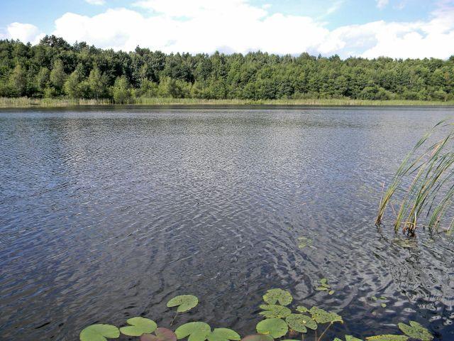 jezioro Małe Liny