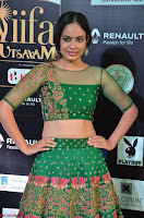 Nandita Swetha in a tight Green Choli Ghagra at IIFA Utsavam Awards March 2017 ~ 002.JPG