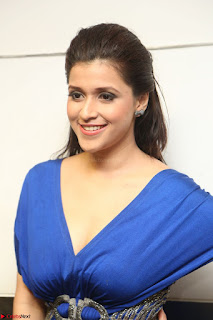Mannara Chopra in Short Blue Dress at Rogue Movie Teaser Launch 1st March 2017 122.JPG