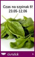 http://durszlak.pl/akcje-kulinarne/czas-na-szpinak-6#fndtn-panel-aktualne