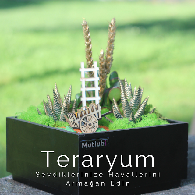 teraryum