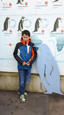 Kölner Zoo - Reiseziel für Familien